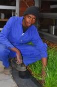 Zandie Gardening